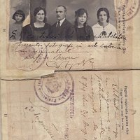 Milstein Family Romanian Passport 1921